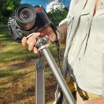 Using Your Monopod