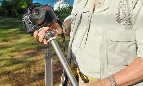 The War Against Blurry Photos: Using A Monopod