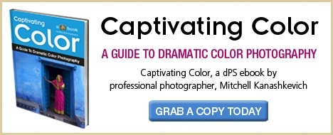 Download Captivating Color now