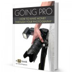 "Will ""Going Pro"" Help You Make Money From Your Photography?"