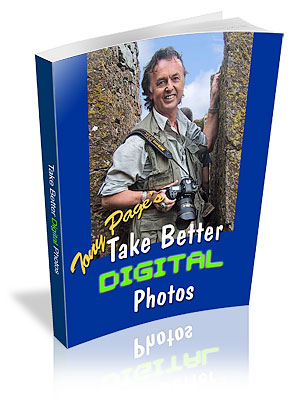 Take Better Digital Photos Today!